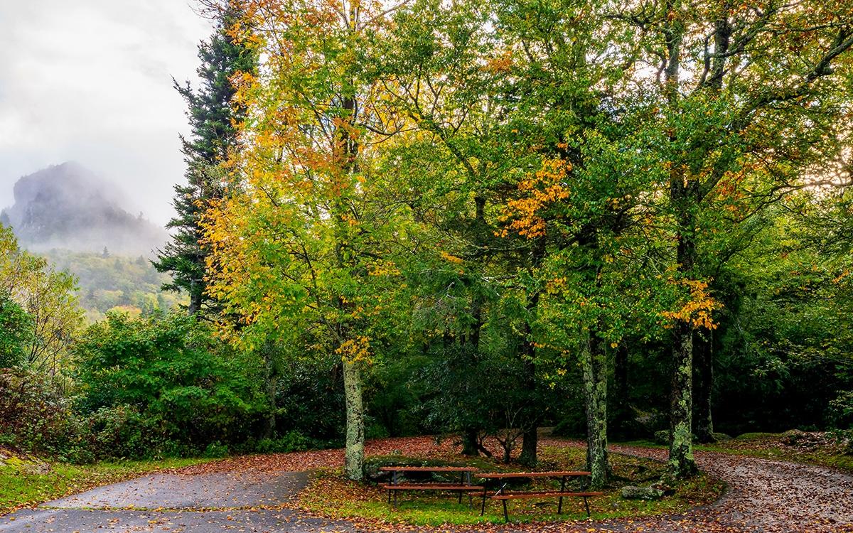 Autumn Colors In Vilas Park Lagoon >> Fall Color Report Wataugaonline Com